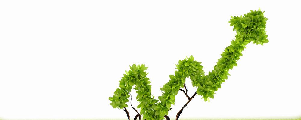 Fonti rinnovabili: dal 2018 devono soddisfare il 50%